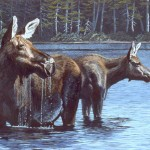 Cow and Calf Moose - SOLD
