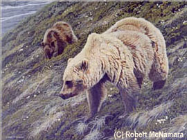 A Slant Towards Summer - Grizzly (Sold)